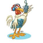 Emission radio Des Lud's et des Plum's